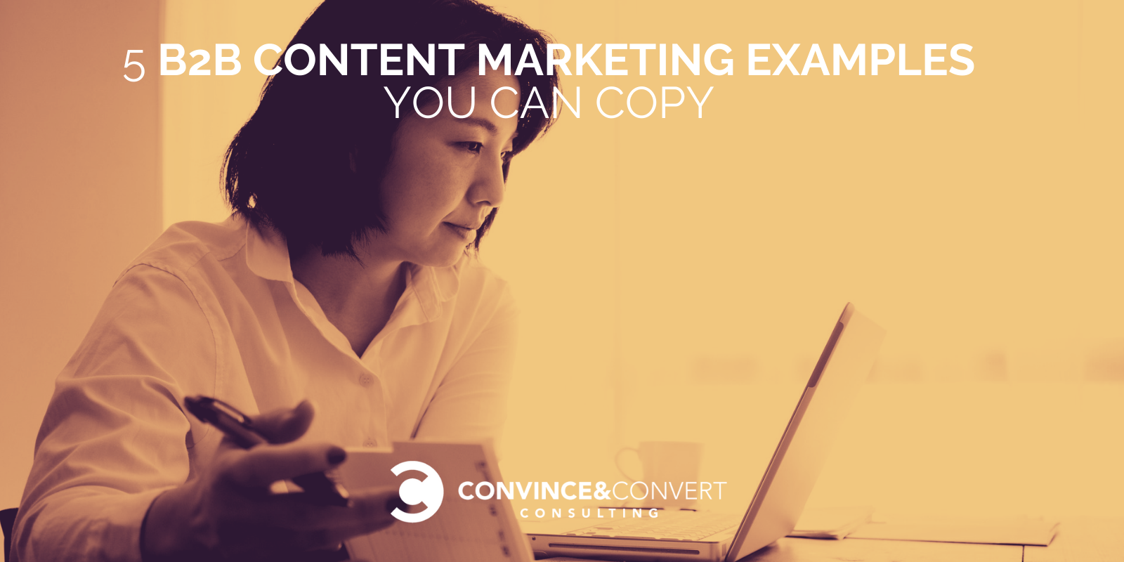 5 B2B Lisp material Marketing and marketing Examples You Can Replica – Persuade & Convert