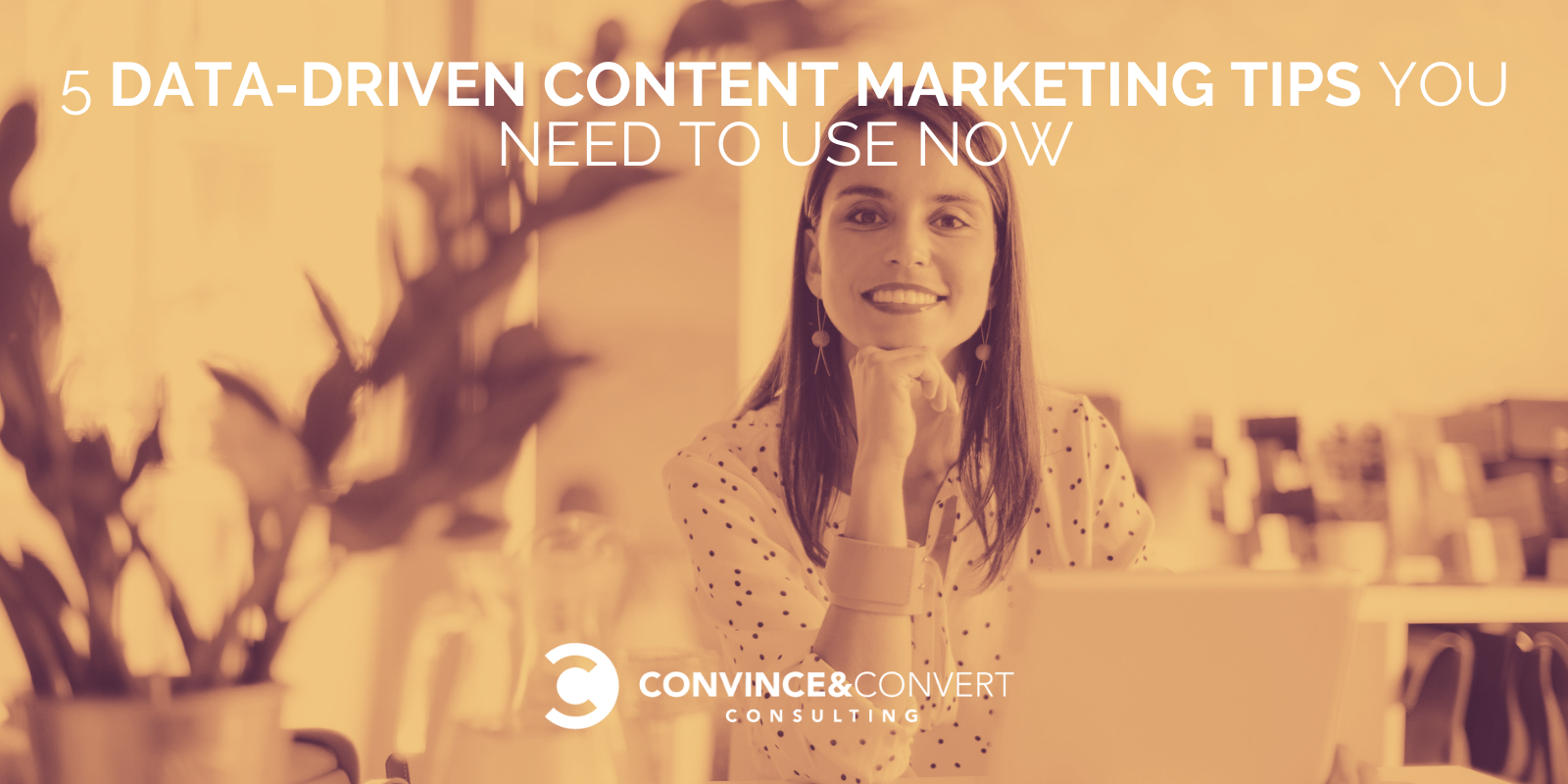 5 Files-Driven Allege Marketing and marketing Guidelines You Want to Exhaust Now