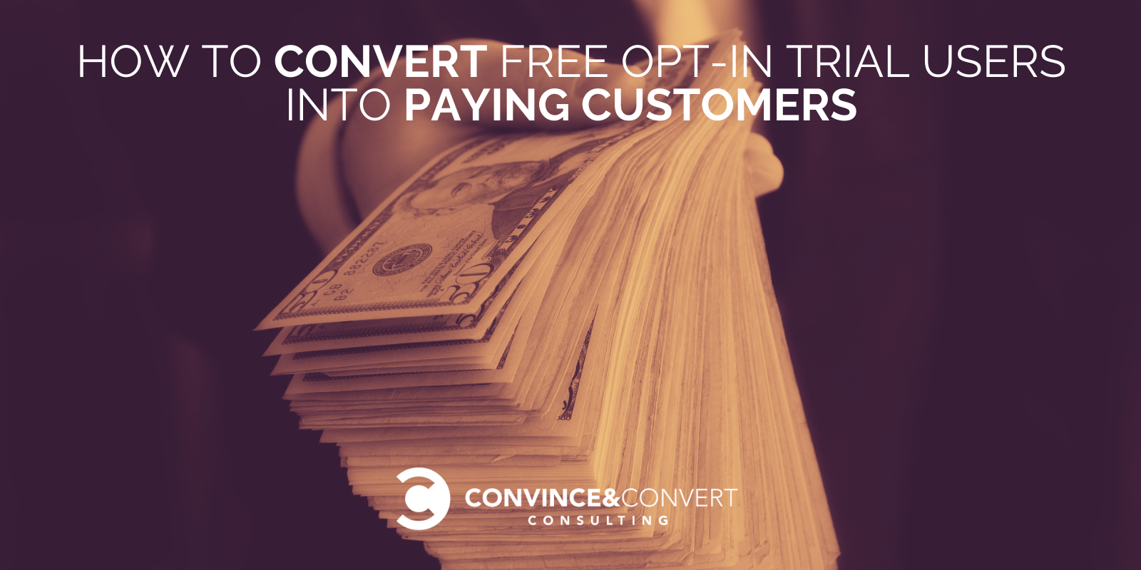 Strategies to Convert Free Make a selection-in Trial Users into Paying Customers