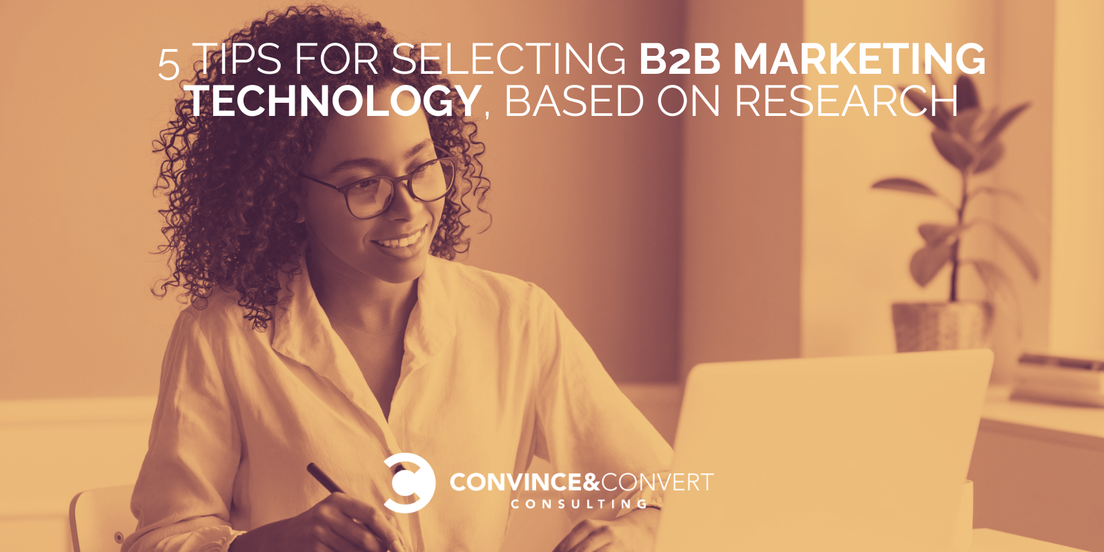 5 Guidelines for Selecting B2B Advertising Technology [Research and Charts]