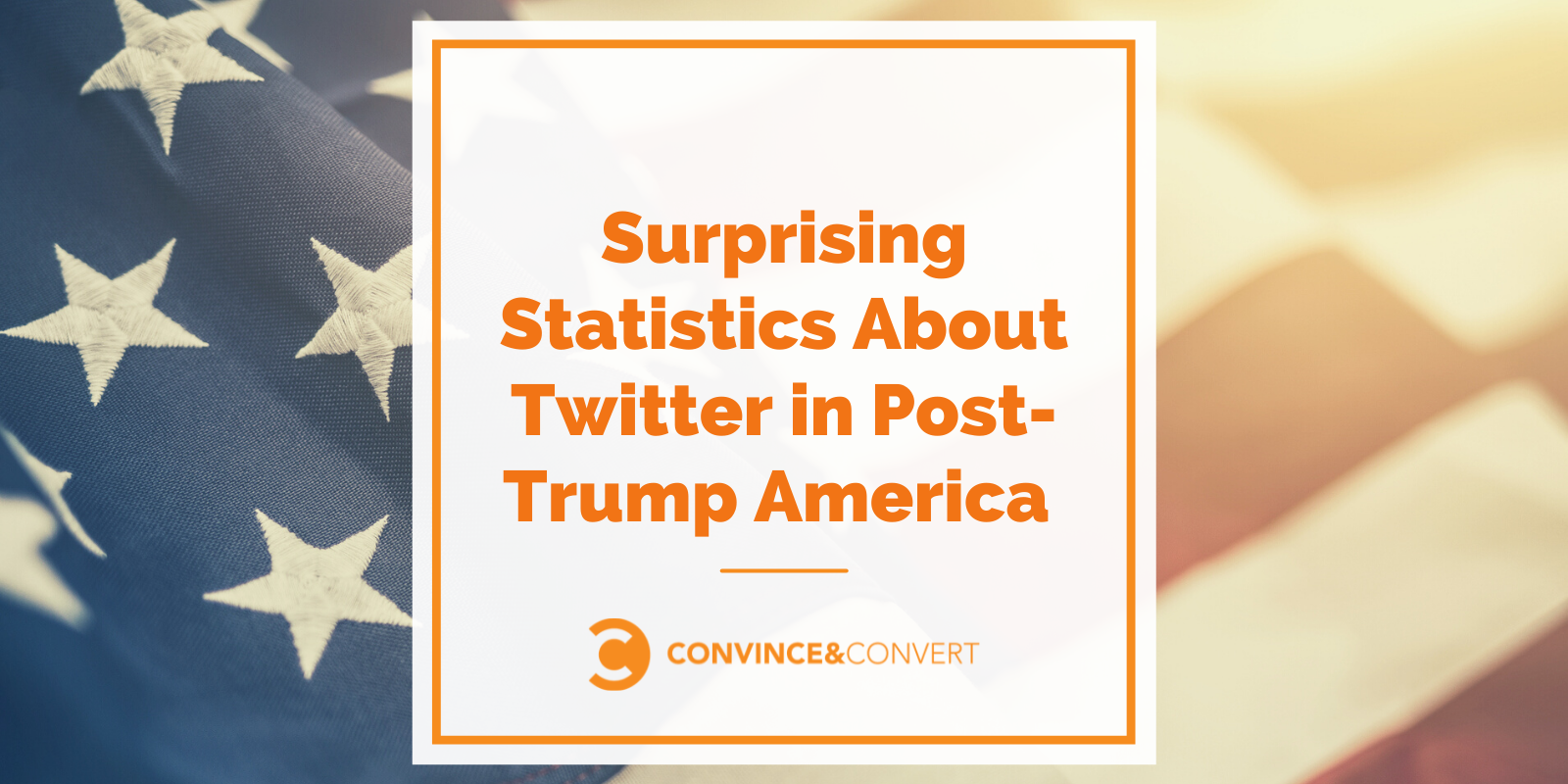 Delicate Statistics About Twitter in Put up-Trump The United States [2021 Research]